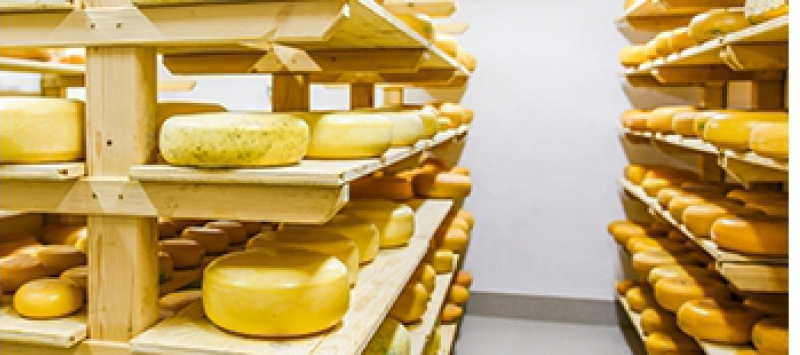 HACCP Dairy- and food industries